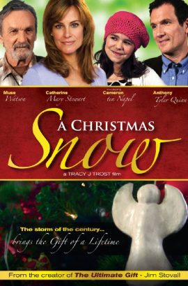 A Christmas Snow Film